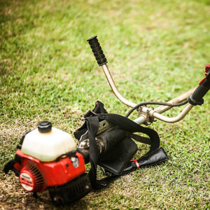 tree and lawn care southeastern ct